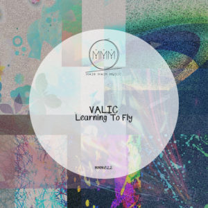 Valic - Learning To Fly